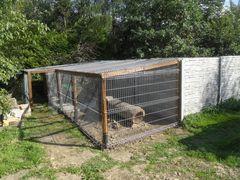 Fundacja Mysikrólik - Na pomoc Dzikim Zwierzętom