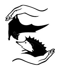 Fundacja Na Rzecz Ochrony Dzikich Zwierząt Primum - logotyp/zdjęcie