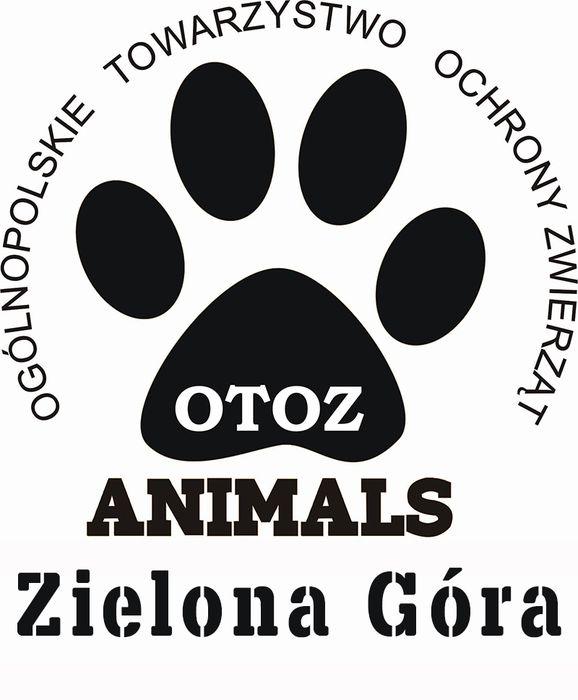 OTOZ Animals Inspektorat Zielona Góra - logotyp/zdjęcie