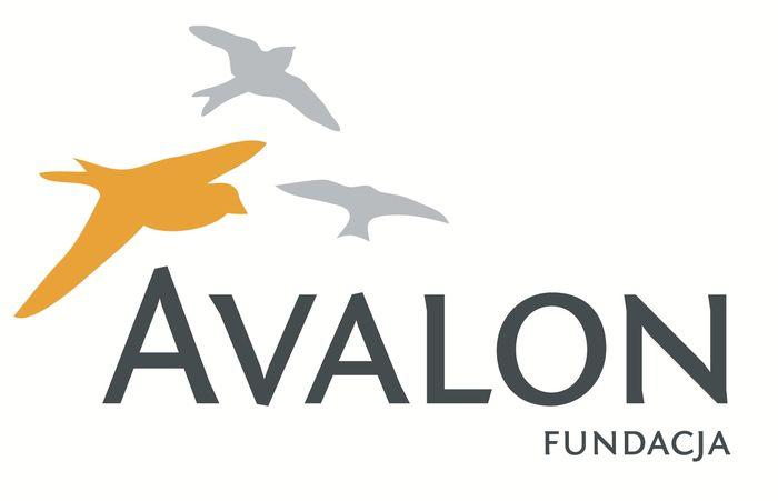 Fundacja Avalon Bezpośrednia Pomoc Niepełnosprawnym - logotyp/zdjęcie