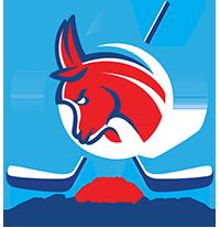 Poznańskie Towarzystwo Hokejowe - logotyp/zdjęcie