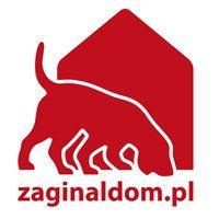 Zaginął Dom  - logotyp/zdjęcie