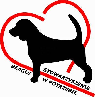 Stowarzyszenie Beagle w Potrzebie - logotyp/zdjęcie