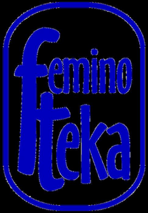 Fundacja Feminoteka - logotyp/zdjęcie