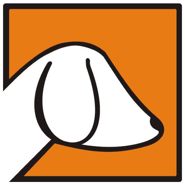 Psi Los Fundacja im. Joanny Krupińskiej - logotyp/zdjęcie