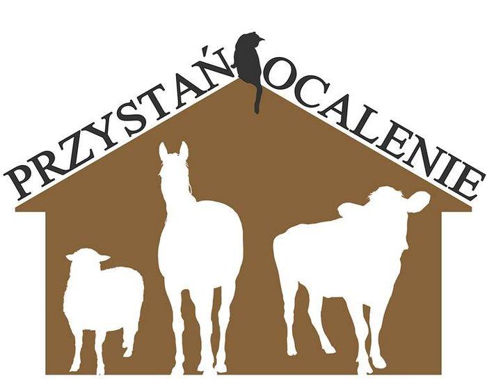 Fundacja Przystań Ocalenie - logotyp/zdjęcie