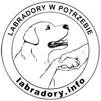 Labradory.info - logotyp/zdjęcie