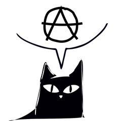 """Fundacja """"Koty z Kociej"""""""