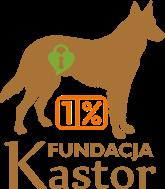 Fundacja Kastor - logotyp/zdjęcie