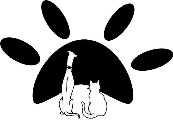 """Stowarzyszenie Pomocy Bezdomnym Zwierzętom """"Słońce dla zwierząt"""" - logotyp/zdjęcie"""