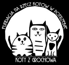 Fundacja Koty z Grochowa - Na Rzecz Kotów w Potrzebie