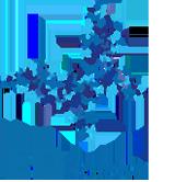 Fundacja EB Polska - logotyp/zdjęcie