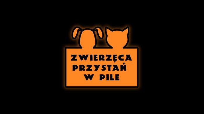 Stowarzyszenie Zwierzęca Przystań - logotyp/zdjęcie