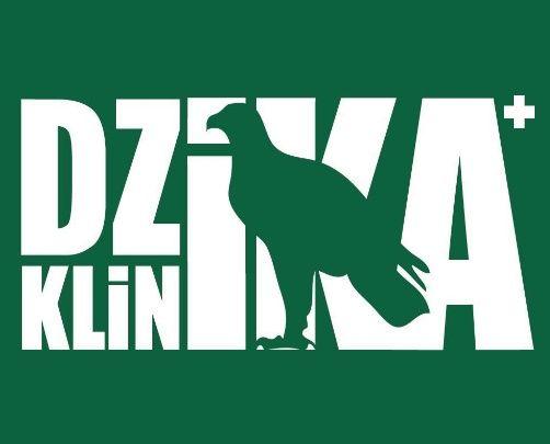 Fundacja Dzika Klinika - Centrum Pomocy dla Dzikich Zwierząt - logotyp/zdjęcie