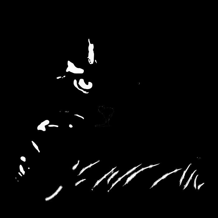 """Fundacja dla Zwierząt """"Koci Pazur"""" - logotyp/zdjęcie"""