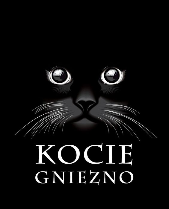 Stowarzyszenie Kocie Gniezno - logotyp/zdjęcie