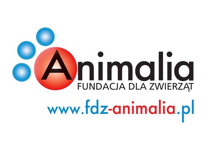 Fundacja dla Zwierząt Animalia - logotyp/zdjęcie