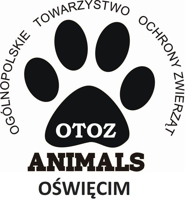 OTOZ Animals Schronisko w Oświęcimiu - logotyp/zdjęcie