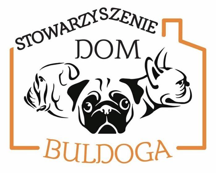 Stowarzyszenie Dom Buldoga - logotyp/zdjęcie