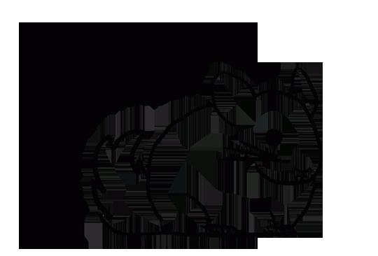 Stowarzyszenie Miłośników Szynszyli Małej - logotyp/zdjęcie