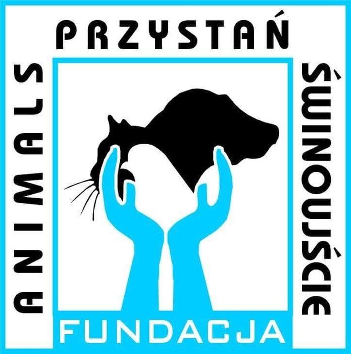 Animals Przystań Świnoujście - logotyp/zdjęcie