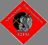 """Stowarzyszenie Szkoła Sztuk Walki i Samoobrony """"Kobra"""" - logotyp/zdjęcie"""