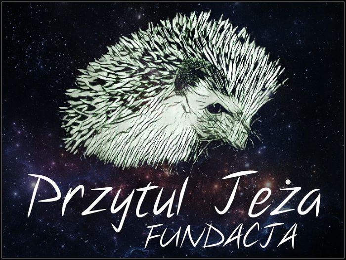 FUNDACJA PRZYTUL JEŻA - logotyp/zdjęcie