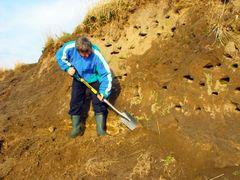 Stowarzyszenie Ekologiczne Etna