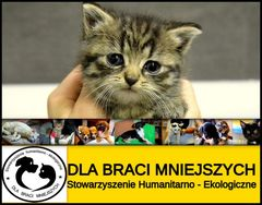 Dla Braci Mniejszych Stowarzyszenie Humanitarno-Ekologiczne