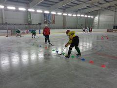 Poznańskie Towarzystwo Hokejowe